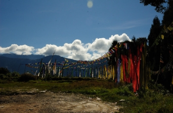 Derjeeling and Sikkim